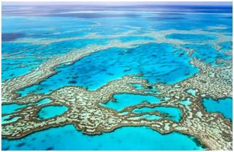 Kasino Cairns Reef